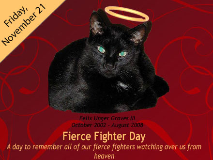 Fierce Fighter Day
