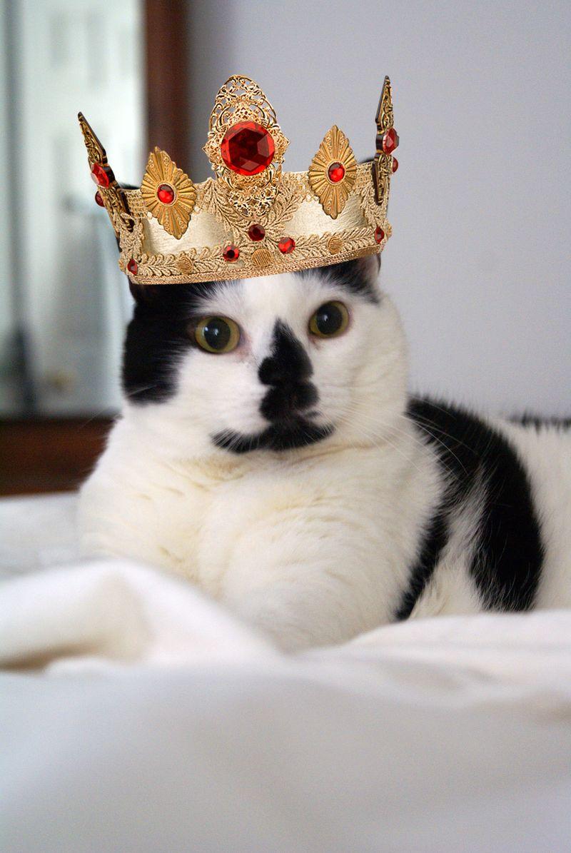 Queen Elsie copy