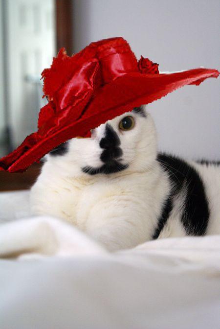 Queen Elsie with Red Hat copy