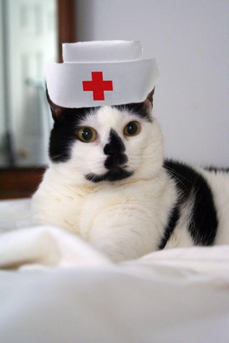 Nurse Elsie Fallulah